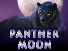 Автомат Panther Moon в казино с выводом денег