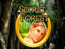 Автоматы с бонусом Secret Forest